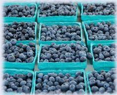Hammonton NJ , The Blueberry Capital of the World