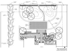 This is the original design plan for the courtyard, driveway, and front yard. We added the Texas Mountain laurel by the mailbox and four bushes in the top right-hand corner to screen the electric boxes by the street. We also added Bougainvillea on the wall in the bottom right-hand corner and a few plants in front of the wall. And we put in a crepe myrtle just to the right of the outside of the courtyard to screen the view of the neighbor's side entry garage.