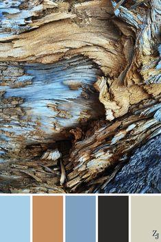 Color Schemes Colour Palettes, Colour Pallette, Color Palate, Color Combos, Brown Color Schemes, Room Colors, Paint Colors, Pintura Exterior, Design Seeds
