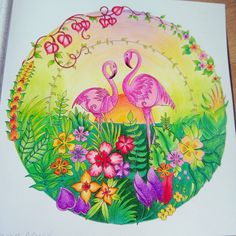 Finished @johannabasford_repost @johannabasford #johannabasford #magicaljungle #coloringbook #color #lovecoloring #coloringforadults #marcoraffine #prismacolor #prismacolorpencils #zenacolor #hobby