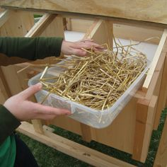 Easy Clean Chicken Coops - Boxes