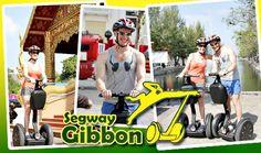เปิดประสบการณ์ท่องเที่ยวรูปแบบใหม่ สนุกไม่ซ้ำใคร ชมความงามเมืองเชียงใหม่ เพียง ฿999 ด้วยพาหนะเก๋ๆ เลิศๆ กับ Segway Gibbon (ปกติ ฿1,999)