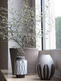 Zickzackstrauch , Tags Braun + 60 er Jahre Vasen + Zimme + Rpflanze