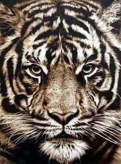 Tiger - pyrography by Lesina Elena