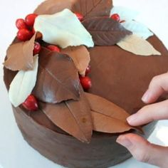 Decorate cake with CHOCOLATE leaves!