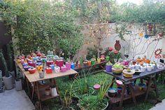 Seis lugares únicos para comprar plantas y flores  El jardín de la casa, lleno de macetas con cactus y suculentas.  /Cecilia Wall
