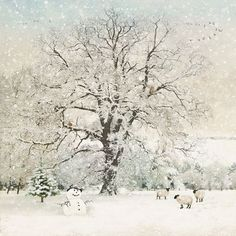 Snowman Field Five Pack - Bug Art greeting card Winter Scenes To Paint, Winter Christmas Scenes, Christmas Town, Christmas Art, Xmas, Illustrations, Illustration Art, Beautiful Winter Scenes, Sheep Art