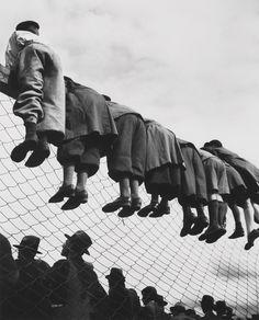 Emil Heilborn | At the Dog Races (1934)