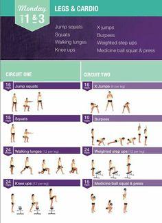bikini body guide pdf reddit