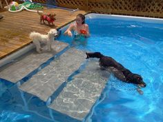 We can make these steps for the pool, then the dogs can get out much easier when they are chasing each other.