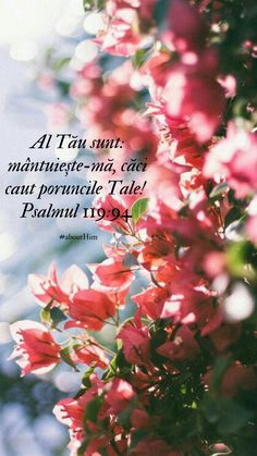 Wallpapers, Quotes, Bible, Verses, Quotations, Wallpaper, Quote, Shut Up Quotes, Backgrounds