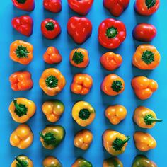 Baby Bell Peppers sorted by color. Food Gradients by Brittany Wright