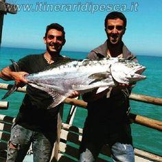 Peschici - Manacorra - Leccia amia di oltre 12kg pesca fishing