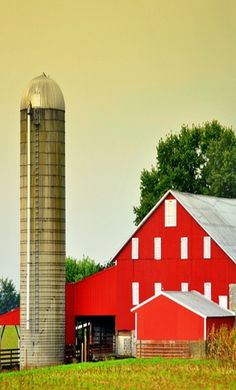 .I'm not used to well-kept painted barns like this. Ours are weathered boards and much smaller.