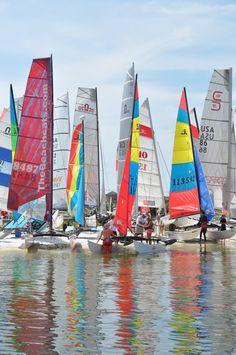 Sailboat Race Florida 2014