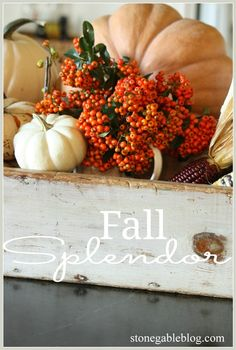 This is a fall wreath with a big punch of seasonal WOW! Fall Vignettes, Thanksgiving Decorations, Thanksgiving Table, Wreath Tutorial, Fall Harvest, Autumn Home, Autumn Inspiration, Fall Pumpkins, Fall Season