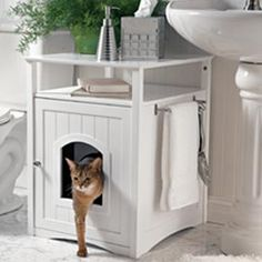 Furniture disguises the litter box.