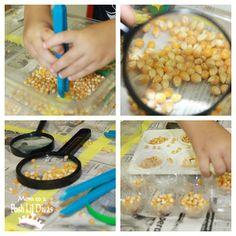 Mom to 2 Posh Lil Divas: Fall Fun - Exploring Scarecrows & Corn in Preschool