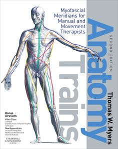Anatomy Trains, 2nd Edition By Thomas W. Myers is hands down and by far my favorite anatomy book. It does a great job of illustrating and describing how our bodies' muscles, tendons, ligaments, bones, joints, and myofascia work together to carry out movement and other everyday bodily functions. A definite must have for anyone interested in learning how to treat the body as a unit.