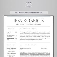 professional curriculum vitae professional cv resume