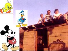 By 1958 We had a club house out back. We also raised chickens and at one point we had over 200. TV was getting to be a big thing around the house. We loved cartoons and especially Disney.
