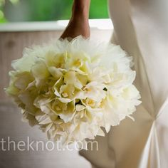 all-white bouquet of cymbidium orchids. The stems were wrapped with ivory, silk ribbon to keep up the simple look