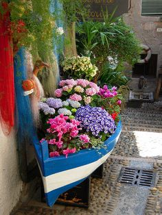 Cute boat as a container garden.
