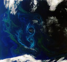 A phytoplankton bloom swirls a figure-of-8 in the South Atlantic Ocean about 600 km east of the Falkland Islands. Different types and quantities of phytoplankton exhibit different colours, such as the blues and greens in this image. // photo by NASA