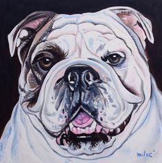 "bulldog smiling 20x20"" oil on canvas by dragoslav milic"