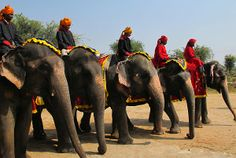 India travel in Rajasthan