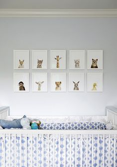 The Animal Print Shop [baby animals] - www.theanimalprintshop.com