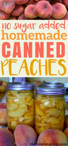 Learn how to can peaches at home with this simple recipe. These peaches are canned in juice- with no additional sugar. Easy canning directions for beginners! #foodpreservation