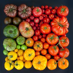 Emily Blincoe creates beautiful photos of everyday objects and food based on size, shape and color. Check out her photos of everyday objects arrangements. Fruit And Veg, Fruits And Vegetables, Colorful Vegetables, Things Organized Neatly, Vegetables Photography, Tomato Season, Happy Labor Day, Heirloom Tomatoes, Everyday Objects