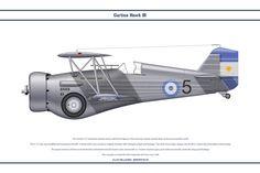 Curtiss Hawk III