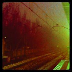 Planea la niebla