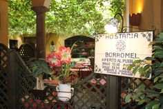 Hostaria Borromei, Milan, Italy.  Good food, friendly and fun staff.