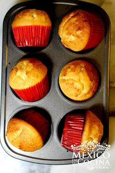 How to make Mantecadas Mexican muffins, called Mantecadas in Mexican bakeries. They are easy & quick to make sweet bread. Sweet bread has a culture of its own in Mexico and is a tradition Mexican Pastries, Mexican Sweet Breads, Mexican Bread, Sweet Pastries, Mexican Dishes, Mexican Bakery, Mexican Candy, Mexican Breakfast, Quick Recipes