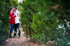 A super cute & fun engagement at Theodore Roosevelt Island in Washington, DC!