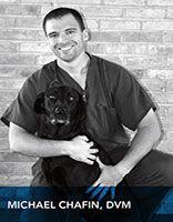 Dr. Chafin | CityVet Oak Lawn