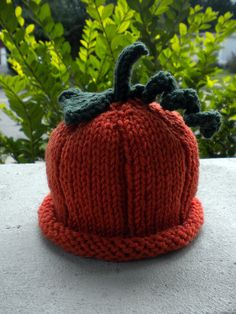 Seriously...  Pumpkin hat for ADULTS!