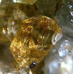 Humite, Vesuvius, Italy 1.5 mm | FMF