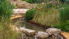 Explore the line-up of more than 30 exciting show gardens and features at the RHS Hampton Court Flower Show in 2018 Hampton Court Flower Show, Rhs Hampton Court, Garden Bridge, Elks, Natural Beauty, Outdoor Structures, Explore, Wood, Water