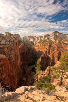 Along the West Rim trail, Zion National Park, Utah