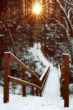 Sun rising over snowy trail in woods, Hamilton Sanctuary, West Bath, Maine.