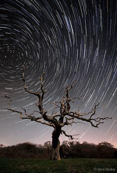 40 Minute Star Trails