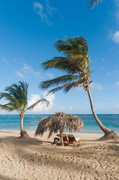 From Punta Cana to Puerta Plata, the Dominican is full of romantic honeymoon destinations. Start planning your Dominican Republic honeymoon. Winter Wedding Destinations, Romantic Honeymoon Destinations, Destination Weddings, Romantic Vacations, Romantic Travel, Tropical Beach Houses, Tropical Beaches, Jamaica Vacation, Vacation Club