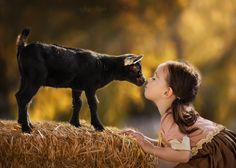 Kisses for Kids - Mia had a great time visiting ONE family animal sanctuary in…