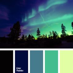black color, blue-color, bright light green, celadon, color combination for winter, dark-blue, green, green color, night color, pale green, palette for winter 2016, palette of winter, shades of winter, winter colors.