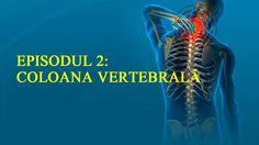 Corectează-ți postura | Ep.2 Coloana vertebrală | www.petrifitness.com https://www.youtube.com/watch?v=11KGlqCNwmg