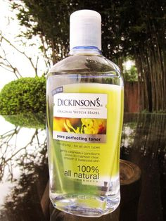 dickinson witch hazel | Dickinson's Witch Hazel Pore Perfecting Toner – Gently and ...